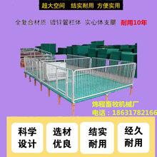 保育床新式现代化仔猪保育床小猪保育床定制加工