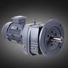 河南R系列斜齿轮硬齿面减速机厂家质量优良