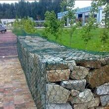 石笼网公司防洪护坡图片