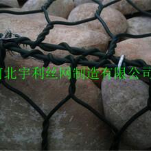 商洛PVC包塑包塑石籠網促銷價格圖片
