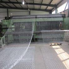 覆塑石笼网公司防洪护坡图片