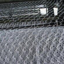 呼伦贝尔包塑石笼网效果怎么样