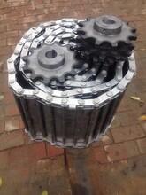 不锈钢链轮工业机械链轮非标定做单排双排三排双齿工业链轮齿轮图片