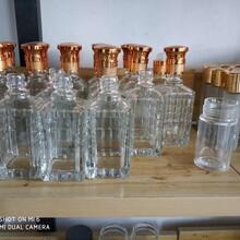 肇慶玻璃酒瓶生產廠家_肇慶酒瓶生產廠家圖片