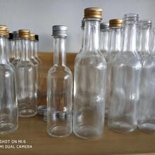 琿春玻璃酒瓶生產廠家_琿春酒瓶生產廠家圖片