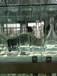 烏魯木齊玻璃酒瓶生產廠家_烏魯木齊酒瓶生產廠家