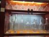 珠海賣酒瓶_福州閩侯水晶玻璃酒瓶生產廠家