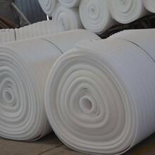 河南珍珠棉厂家直销质量优良图片