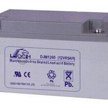 河北理士蓄电池DJM1210012V100ah现货供应