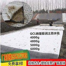 甘肃临夏蓄水池人工湖天然纳基膨润土防水毯绿色环保图片
