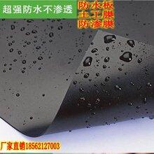 供应人工湖防渗膜。定制地铁基础土工膜、直销环保专用土工膜图片