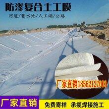 陕西800g复合土工膜公司_复合土工膜图片价格图片