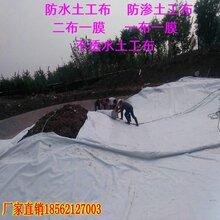 复合土工膜价格-复合土工膜-和县土工材料出售图片