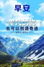 收购北京保险经纪公司预算