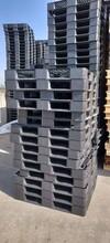 温州回收二手塑料托盘电话图片