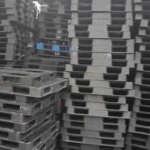宁波回收二手塑料托盘图片