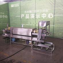 凉皮机,面皮机设备,大明厂家直销,陕西全自动凉皮机生产厂家图片