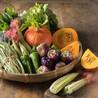 天天鲜农产品
