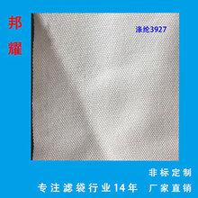 滌綸濾布3927制糖食用油壓榨過濾布耐酸堿工業濾布圖片
