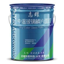玻璃鳞片涂料生产厂家山东省防腐设计院产品