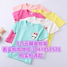 女童t恤半袖包邮台湾童装运动t恤男秋季女装批发网图片