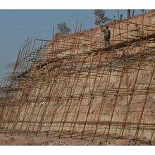 重庆护坡绿化重庆边坡施工重庆公路护坡图片