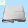 广州厂家定制白色透明加导条食品pu输送带