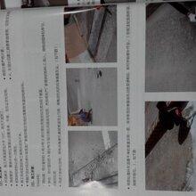 中德新亚抗裂密实剂图片