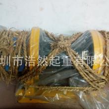 東莞多功能電動提升機廠家定制圖片