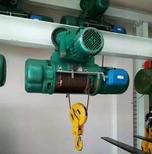 惠州起重機電動葫蘆質量保障圖片3