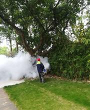 长沙县专业灭苍蝇服务公司