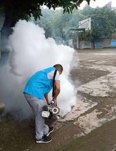 岳麓区专业的灭蚊