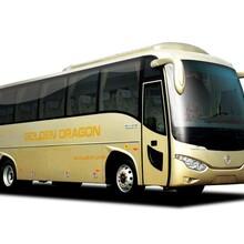 从潍坊到密山汽车(客车欢迎您)客运专线图片