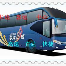 大巴车)潍坊到延吉的汽车(客车时刻表)155公司哪家便宜图片
