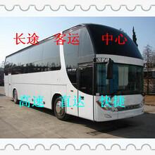 大巴車)濰坊到鄧州的汽車(客車時刻表)155幾點發車/開多久圖片
