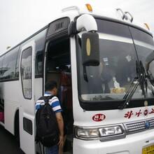 潍坊KC到乌海汽车客车线路(查看/多少钱)图片