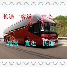 从潍坊到鱼台汽车(客车欢迎您)快客订票几点发车图片