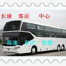 客車:濰坊到高郵長途汽車(歡迎乘車/歡迎乘車)圖片