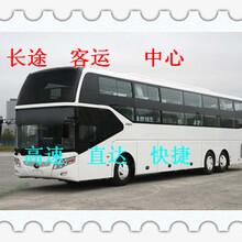 客车)烟台到太和乘卧铺长途大巴155图片