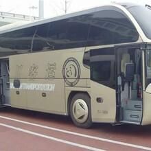 湖北荊州地區到嵊州大巴車每天一班車客車票價歡迎咨詢圖片