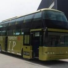 哈尔滨到平邑豪华大巴客运专线图片