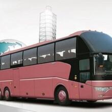 武漢到徐州直達大巴車(歡迎乘坐每天兩班)圖片