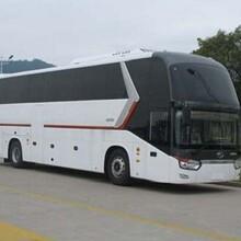 湖北荊州地區到余姚大巴車每天一班車客車票價歡迎咨詢圖片