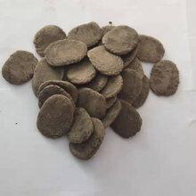 海参片料/颗粒料--海参网箱养殖专用料海参饲料生产厂家图片