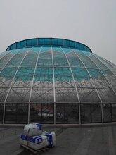 嘉兴鸟巢温室技术