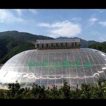 杭州鸟巢温室施工价格