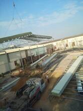 通粵鋼結構工程隊,星瓦棚返新,鋼結構平臺、閣樓圖片