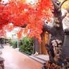 沧州水泥假树制作-廊坊室内假树-衡水仿真假树