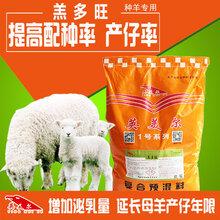 农村养羊羊饲料母羊淘汰的方式方法!图片