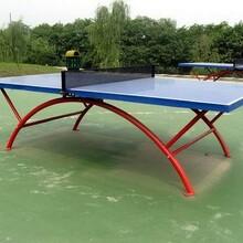 新款乒乓球台批发代理图片